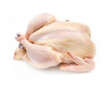 csirke-tyuk