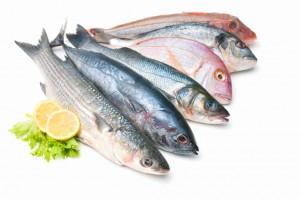 hal-cikk-2